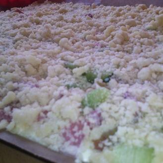 Rhabarber- Blechkuchen mit leckerer Quarkcreme und Streusel